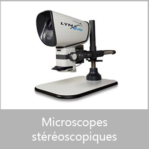 Microscopes Stéréoscopiques
